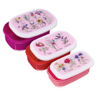 Flower Fairies Snack box